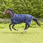 Elico Abberley Turnout Rug