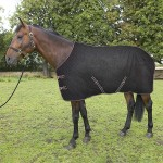 rug-benfield-horse-600x600