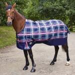rug-ivinghoe-horse-600x600