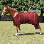 rug-snowdonia-horse-600x600