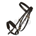 bridle-in-hand-600x600