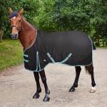 rug-markfield-horse-600x600.jpg
